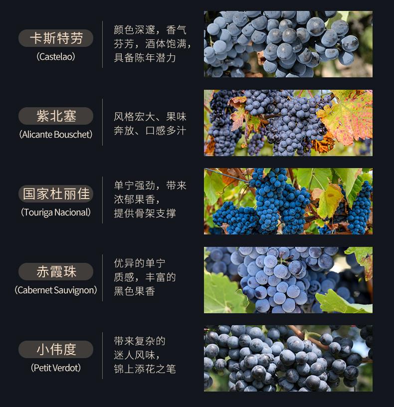 獵鷹經典紅葡萄酒_05.jpg