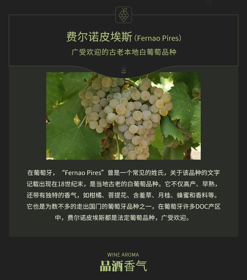 獵鷹老藤白葡萄酒_05.jpg
