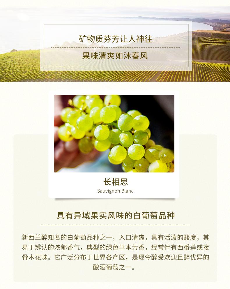 白松長相思白葡萄酒_05.jpg